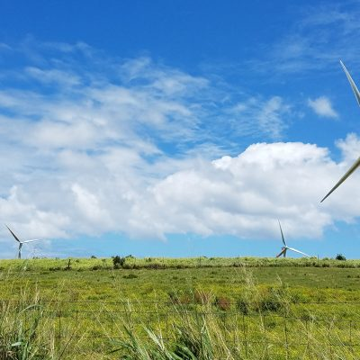 Tall White Windmills Turning in a Green Field, Big Island, Kapaau, Hawaii